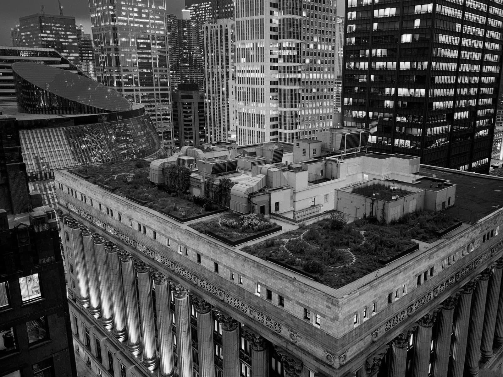 كيف تؤثر المباني الخضراء على إنتاجية الساعة؟