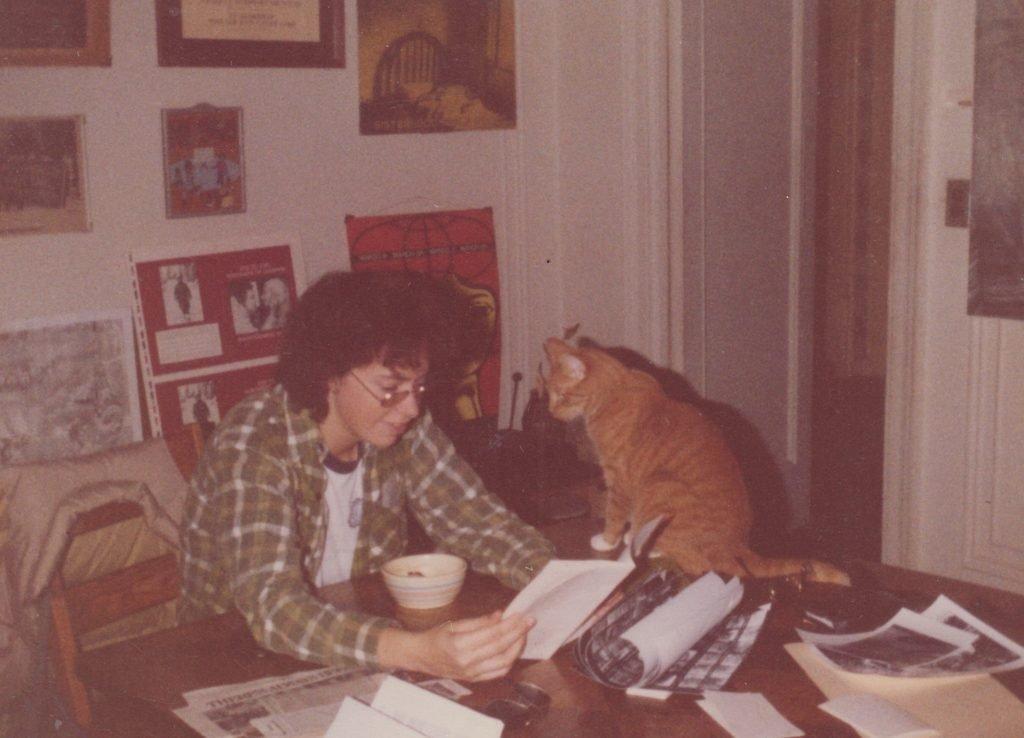 القطط في هارلم